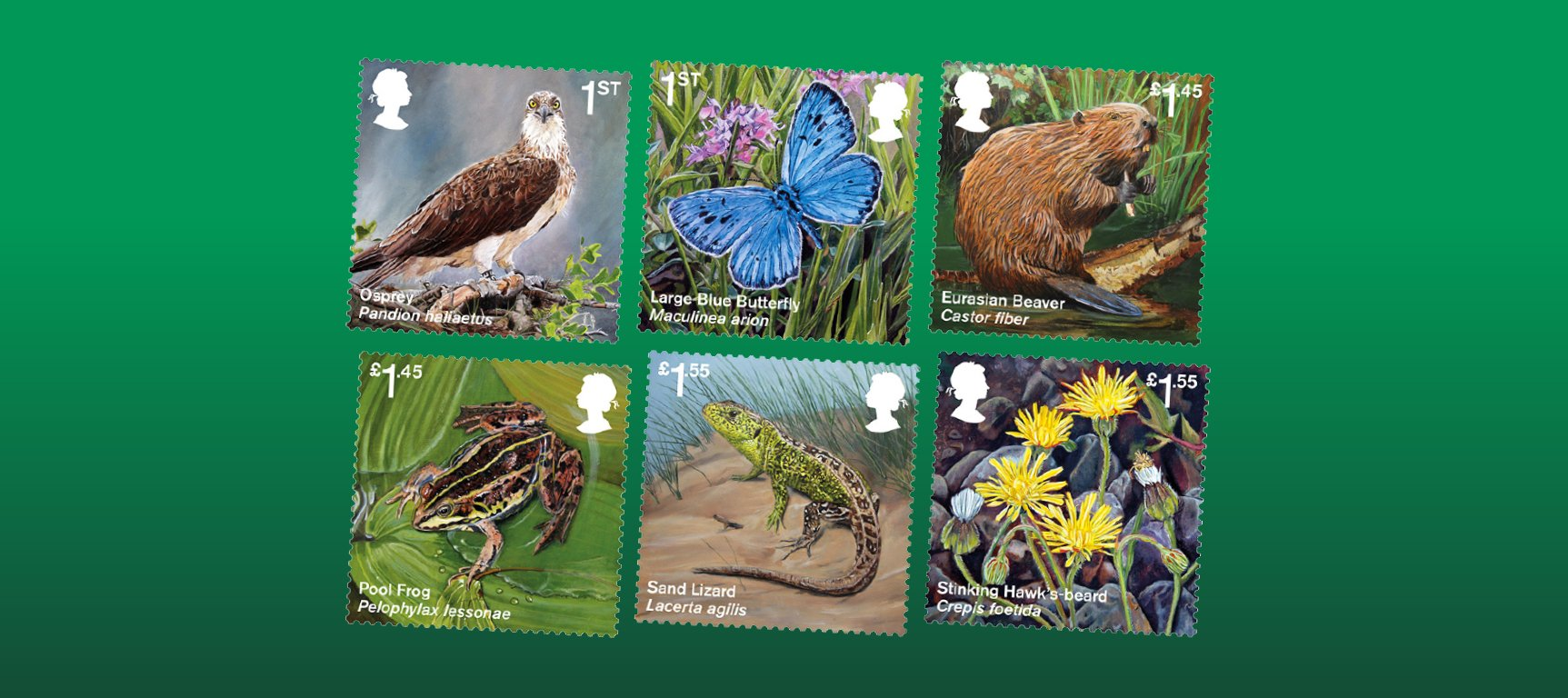 A Royal Mail Reintroduced Species Stamp Set